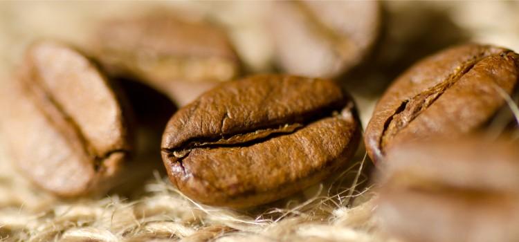 Le café – entre légendes et vérité